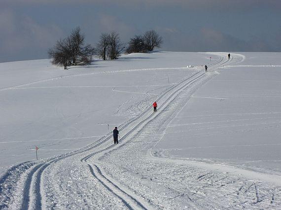 Jak je to s lyžováním