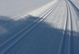 Nový sníh 8. února